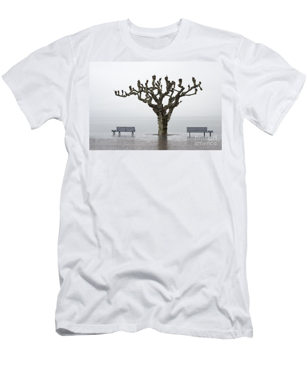 Rain Men's T-Shirt (Athletic Fit) featuring the photograph Benches And Tree by Mats Silvan