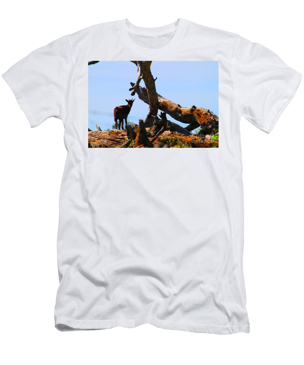 Upcountry Maui Men's T-Shirt (Athletic Fit) featuring the photograph Billy The Goat by Pharaoh Martin