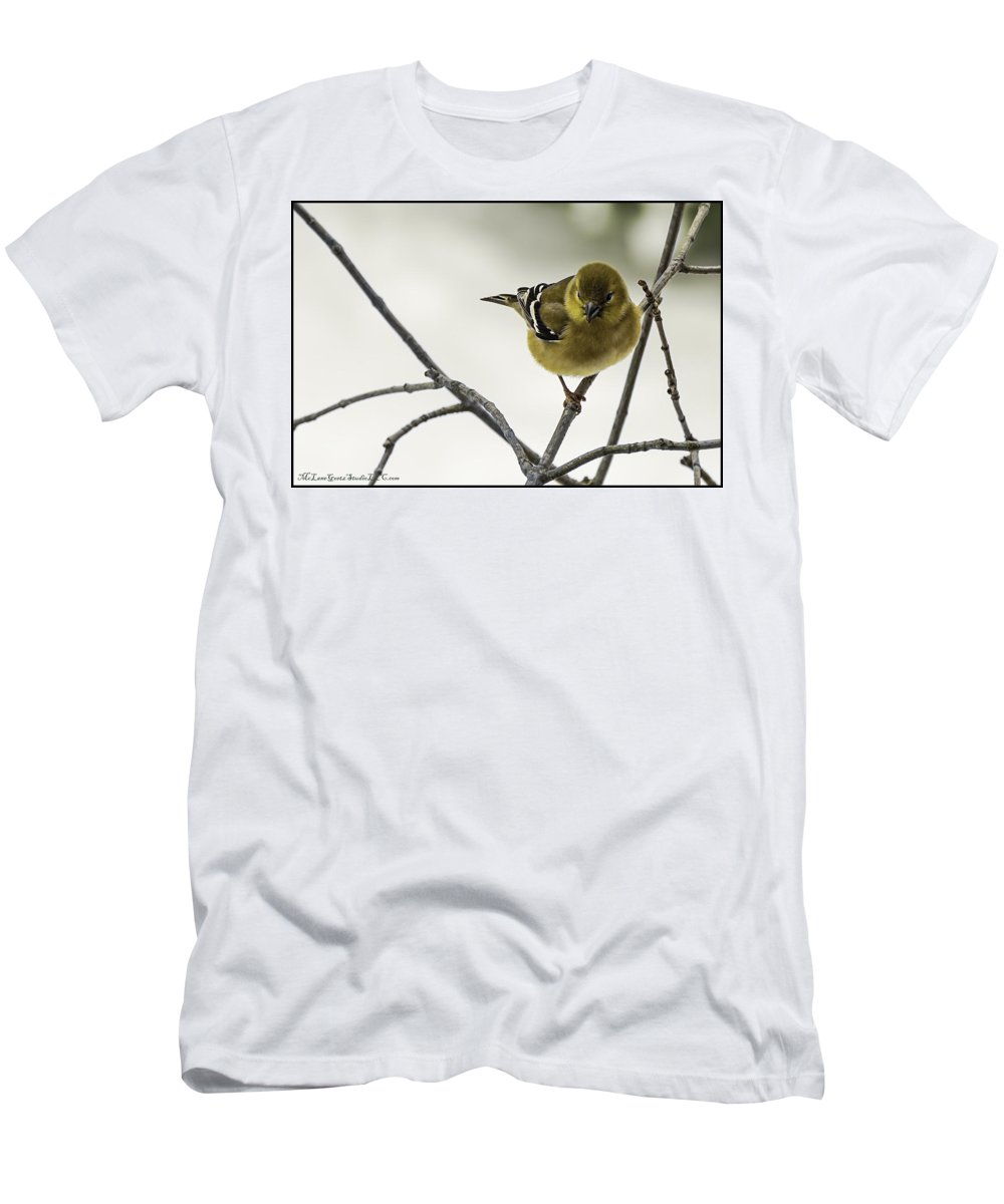 North America Men's T-Shirt (Athletic Fit) featuring the photograph Birdy Birdy Goldfinch by LeeAnn McLaneGoetz McLaneGoetzStudioLLCcom