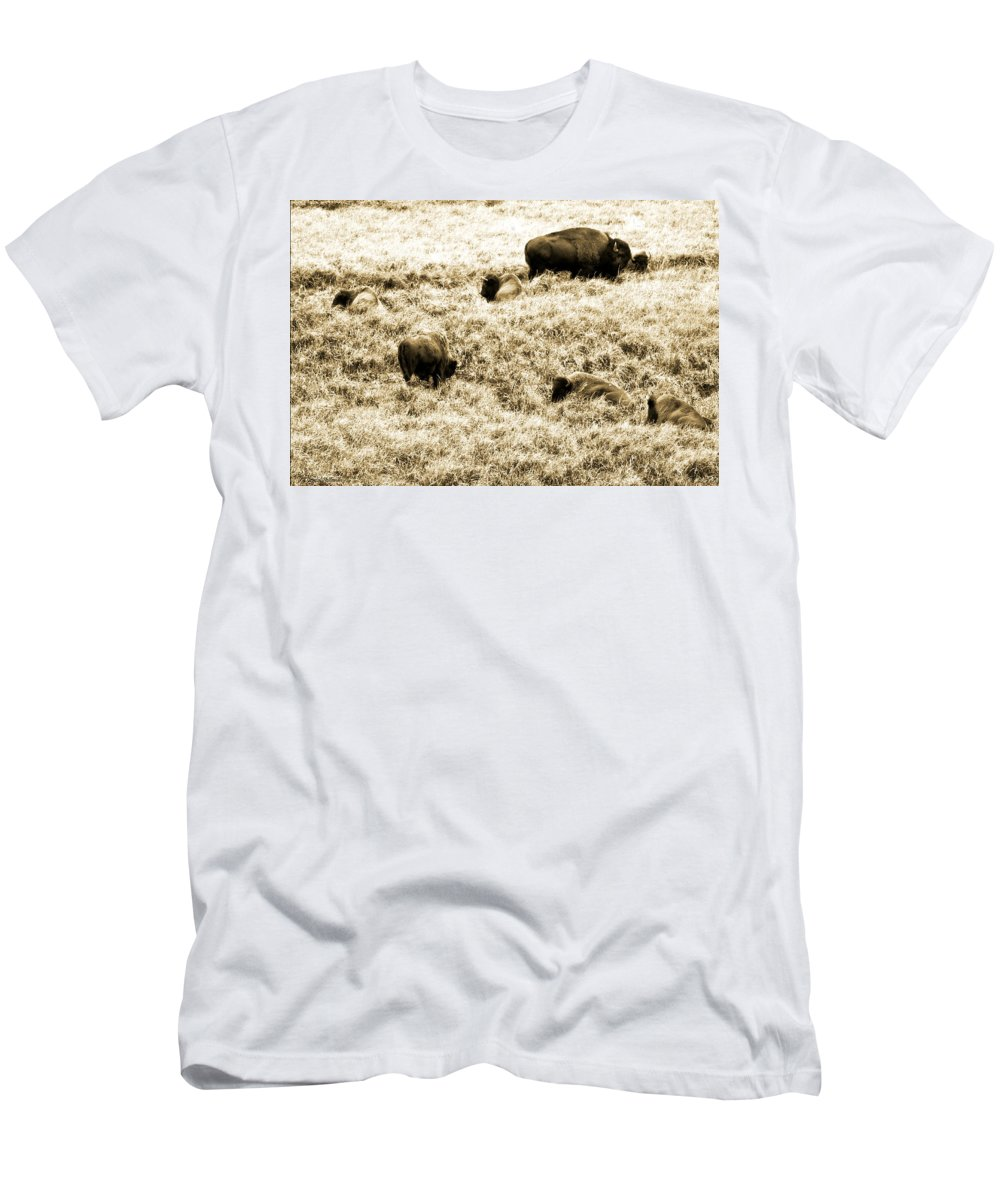 Bison Men's T-Shirt (Athletic Fit) featuring the photograph Bison Herd by Crystal Heitzman Renskers