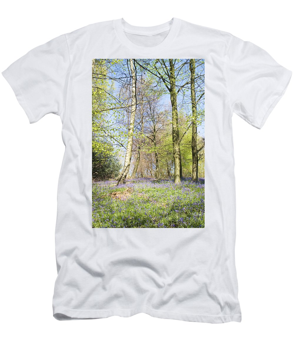 Bluebells Men's T-Shirt (Athletic Fit) featuring the photograph Bluebell Time In England by Peter Lloyd