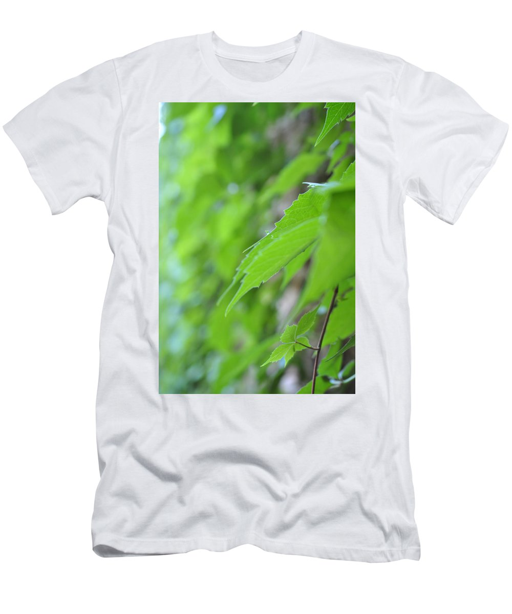 Boston Ivy Men's T-Shirt (Athletic Fit) featuring the photograph Boston Ivy Bokeh by Pamela Smale Williams
