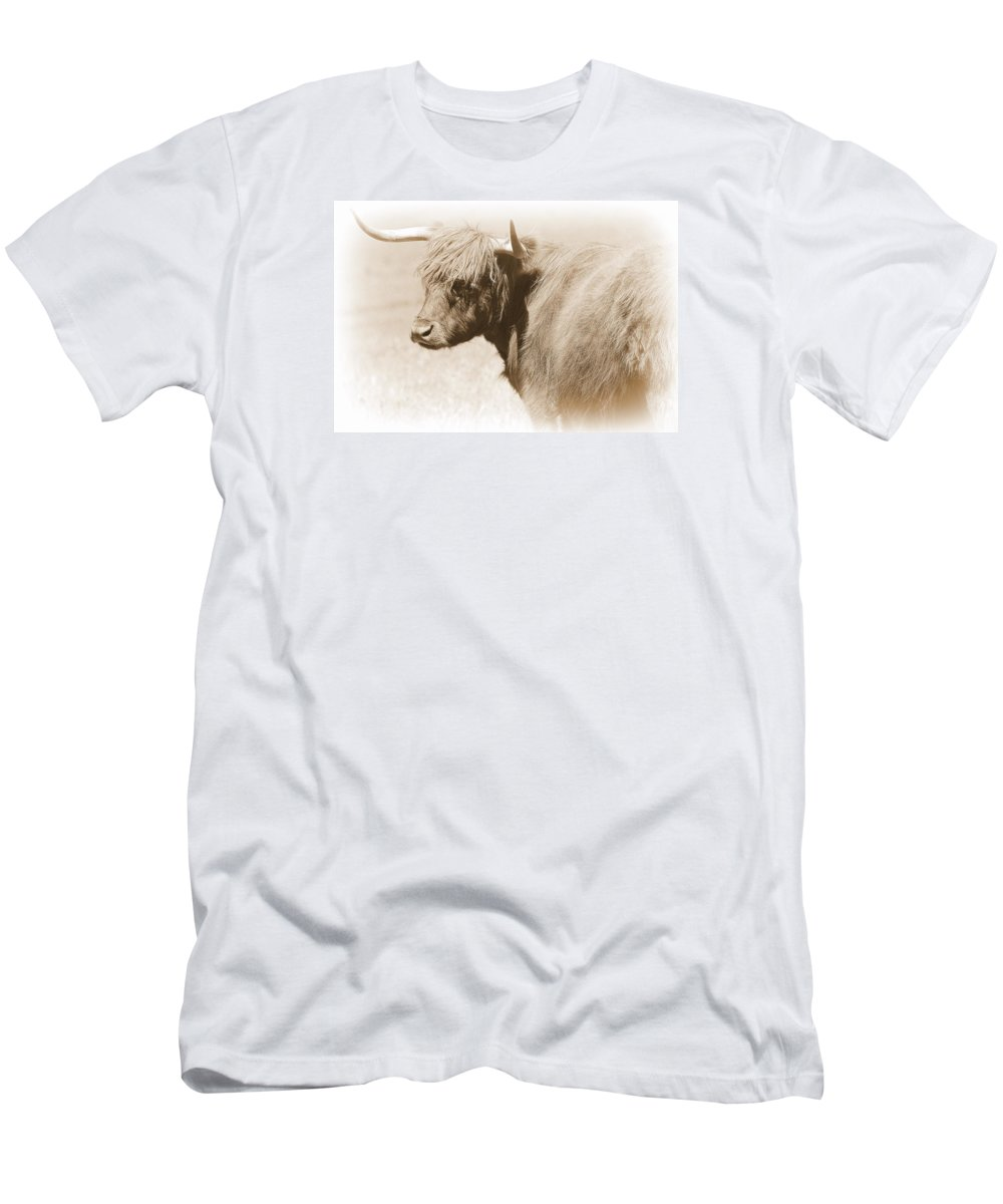 Bovine Men's T-Shirt (Athletic Fit) featuring the photograph Bovine With Bangs by Toni Abdnour
