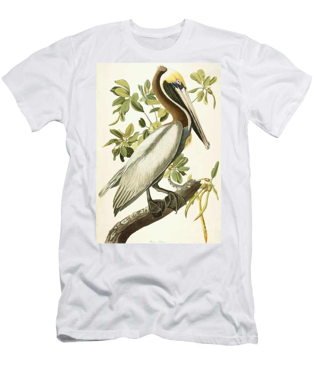 Brown Pelican Men's T-Shirt (Athletic Fit) featuring the painting Brown Pelican by John James Audubon