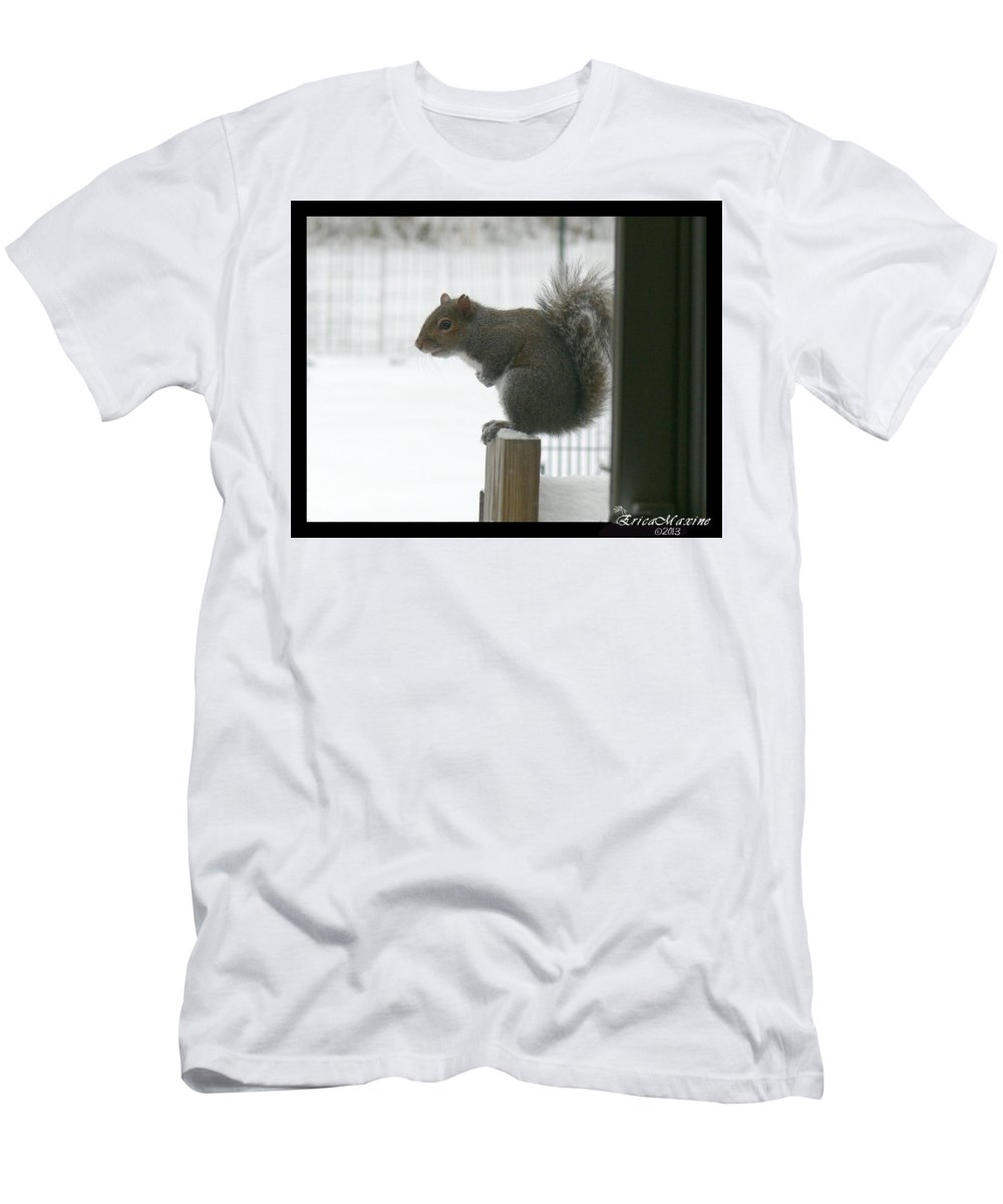 Squirrel Men's T-Shirt (Athletic Fit) featuring the photograph Brrrrrrrrrrrr - Featured In Comfortable Art Group by Ericamaxine Price