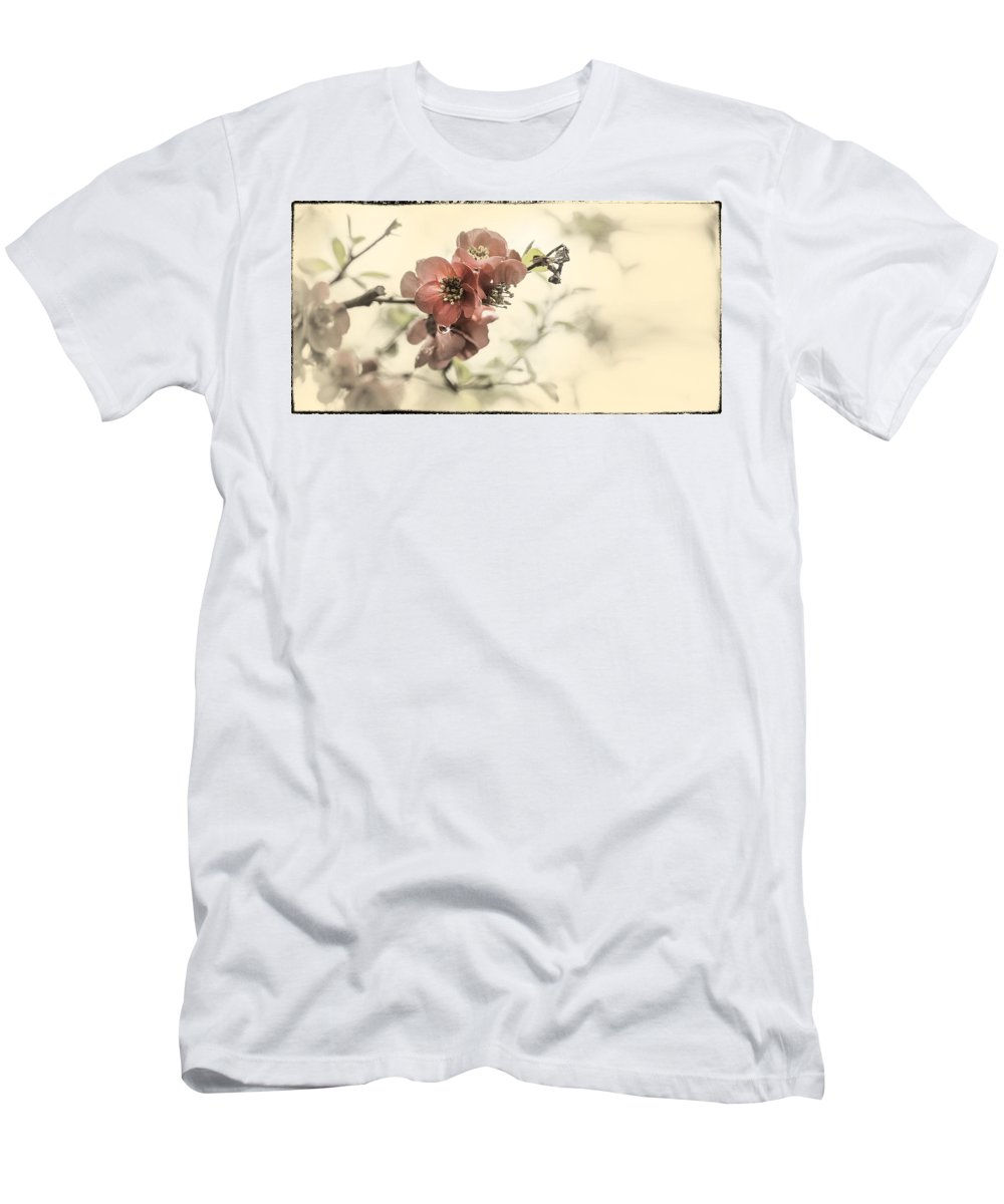 Cherry Blossom Men's T-Shirt (Athletic Fit) featuring the photograph Cherry Blossoms by Peter v Quenter