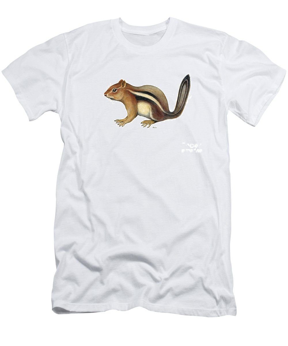 Chipmunk Men's T-Shirt (Athletic Fit) featuring the painting Chipmunk by Art MacKay