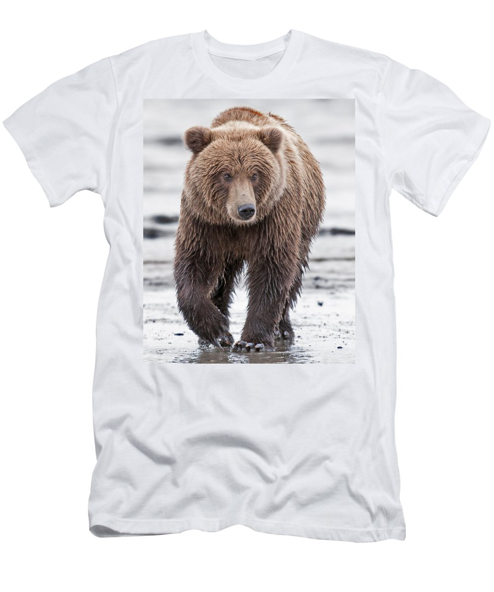Wild Men's T-Shirt (Athletic Fit) featuring the photograph Coastal Brown Bear A Walk On The Beach by Gary Langley