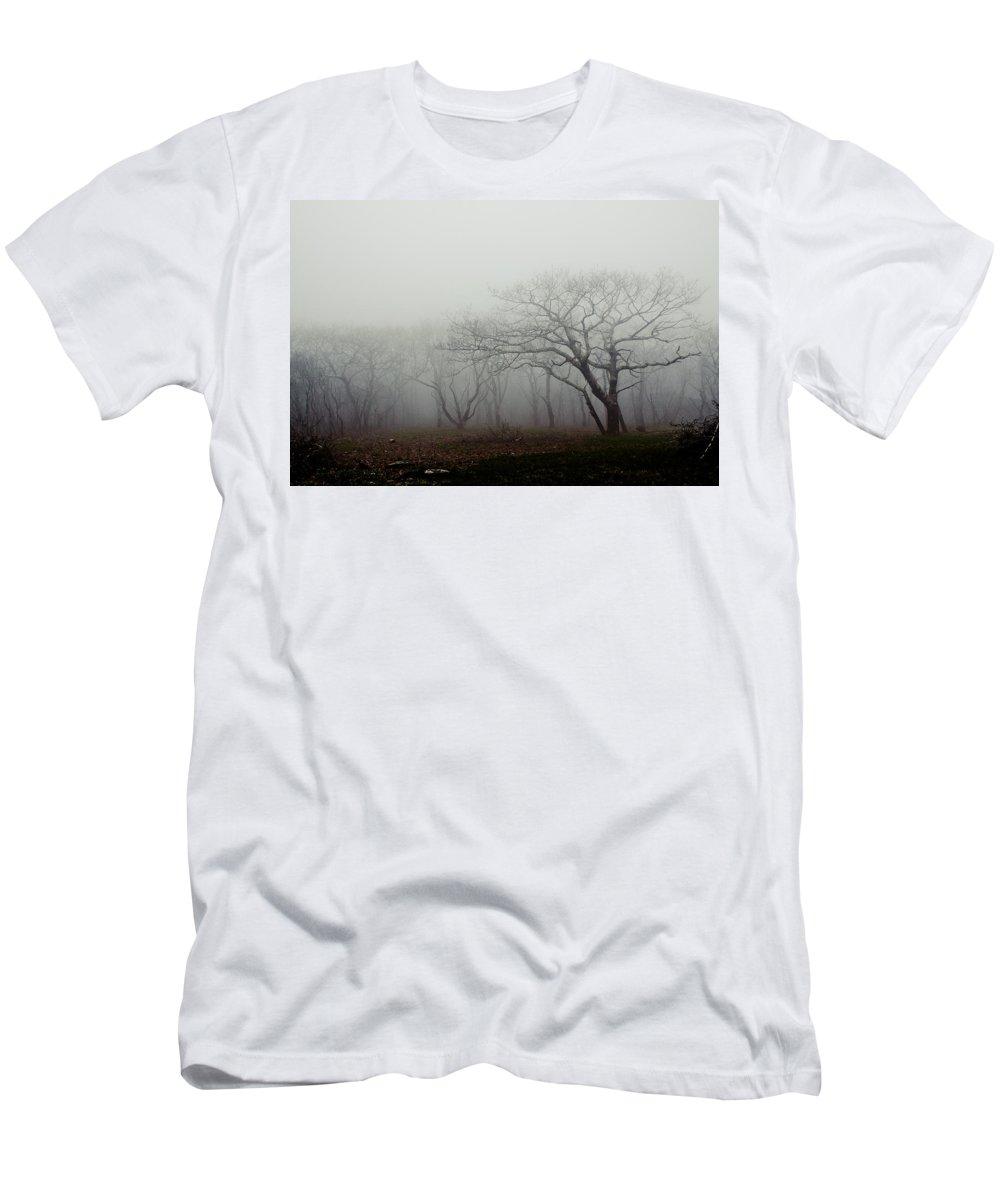2013 Print Men's T-Shirt (Athletic Fit) featuring the photograph Craggy Gardens Mist by Mela Luna