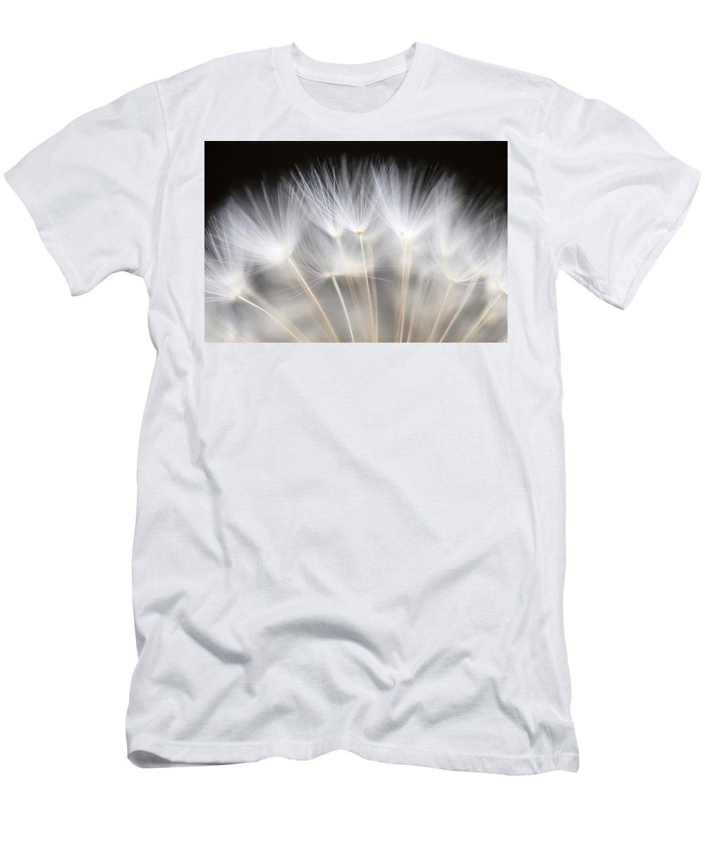 Dandelion Men's T-Shirt (Athletic Fit) featuring the photograph Dandelion Backlit Close Up by Jim Corwin