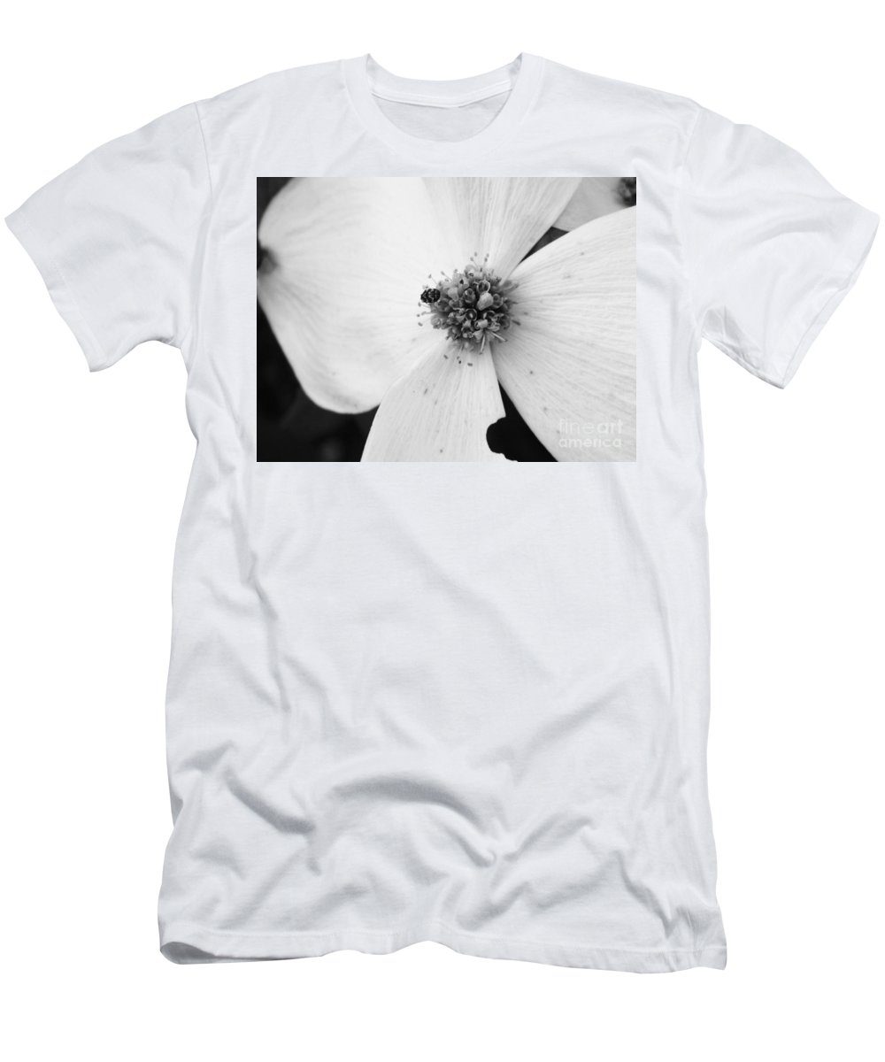 Flower Men's T-Shirt (Athletic Fit) featuring the photograph Dogwood Black And White 2 by Andrea Anderegg