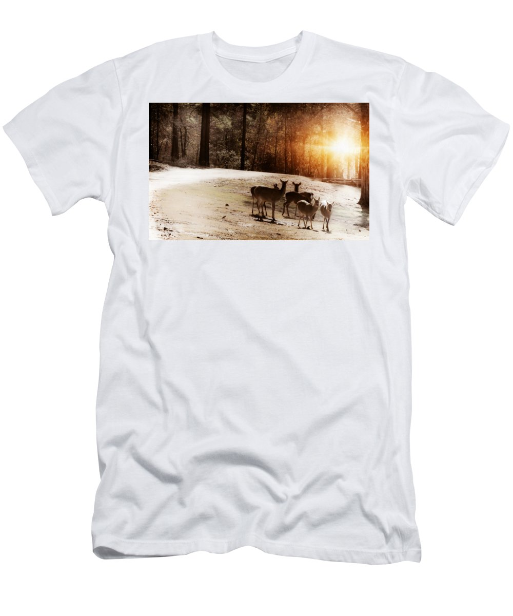 Deer Men's T-Shirt (Athletic Fit) featuring the photograph Evening Social by Kim Henderson
