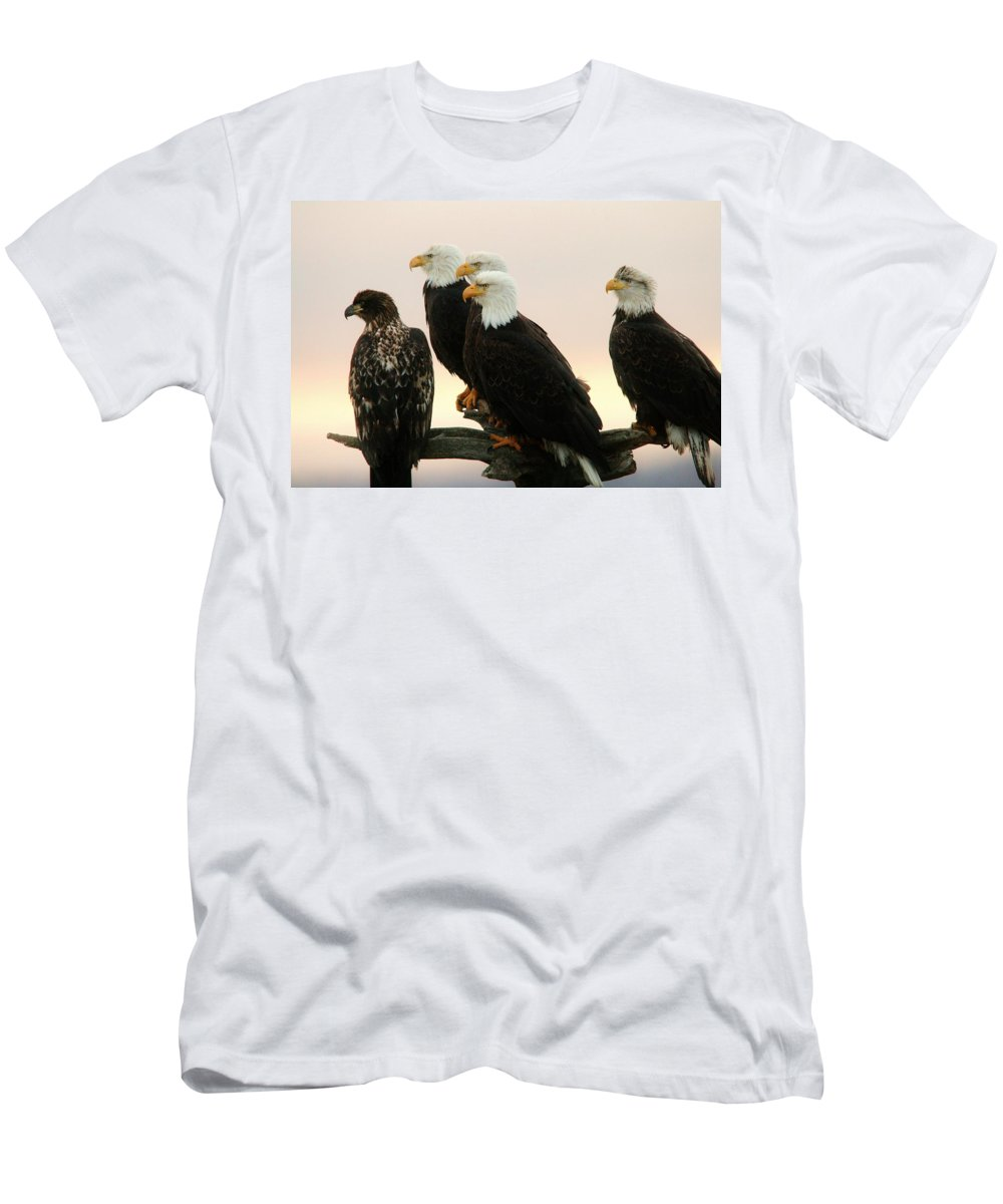 Eagle Men's T-Shirt (Athletic Fit) featuring the photograph Feathered Friends by Karen Jones