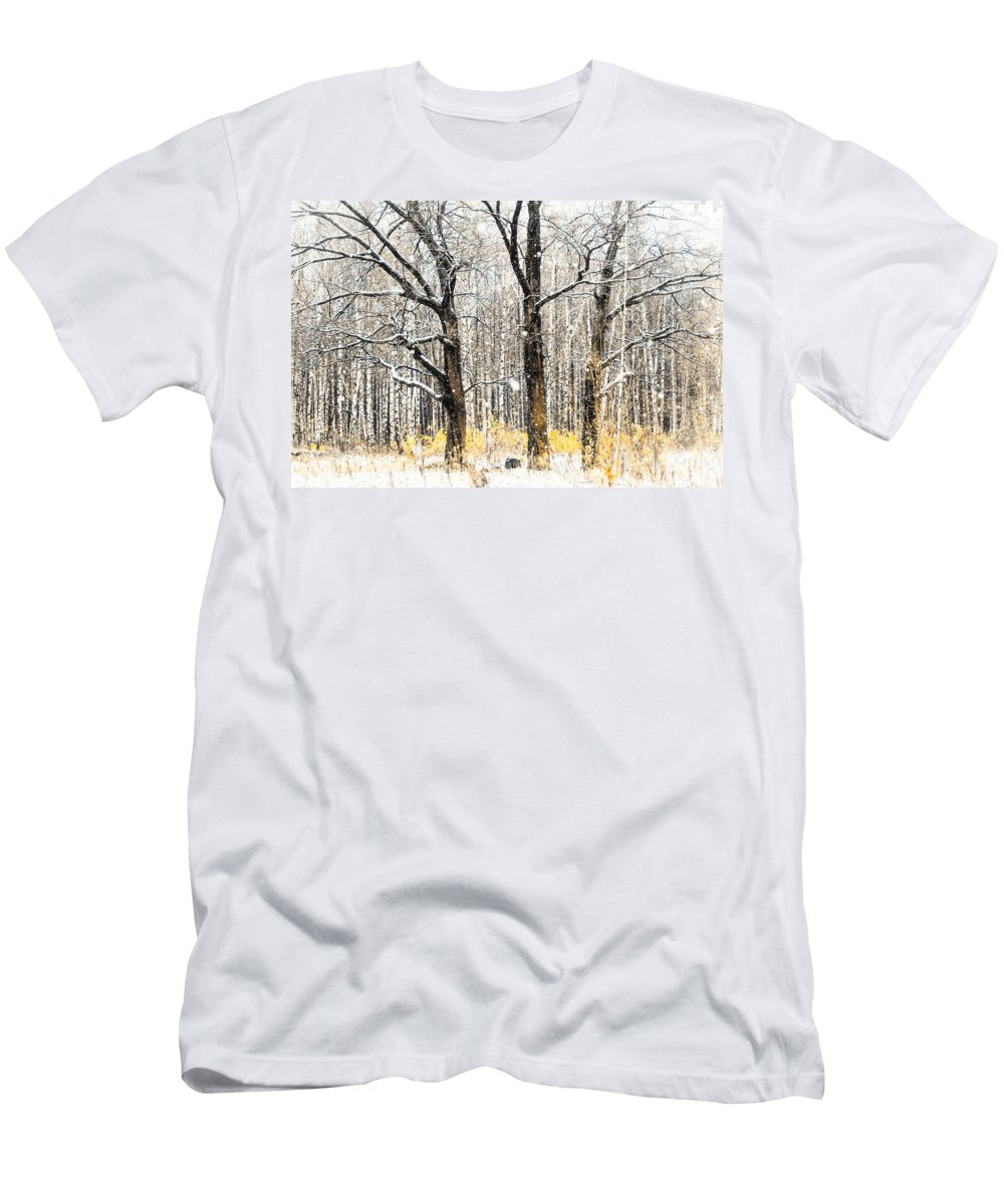 Snow Men's T-Shirt (Athletic Fit) featuring the photograph First Snow. Tree Brothers by Jenny Rainbow