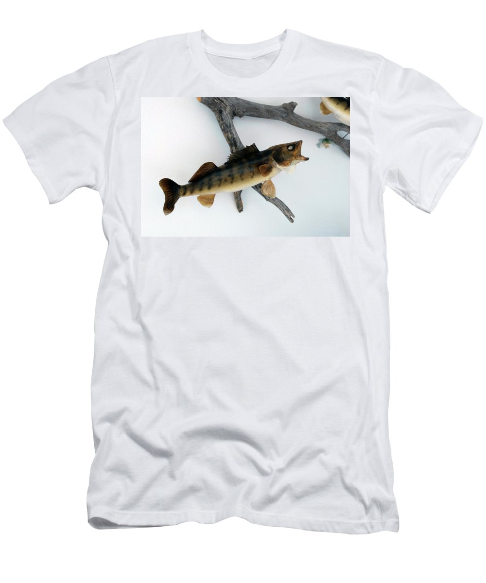 Animals Men's T-Shirt (Athletic Fit) featuring the photograph Fish Mount Set 02 A by Thomas Woolworth