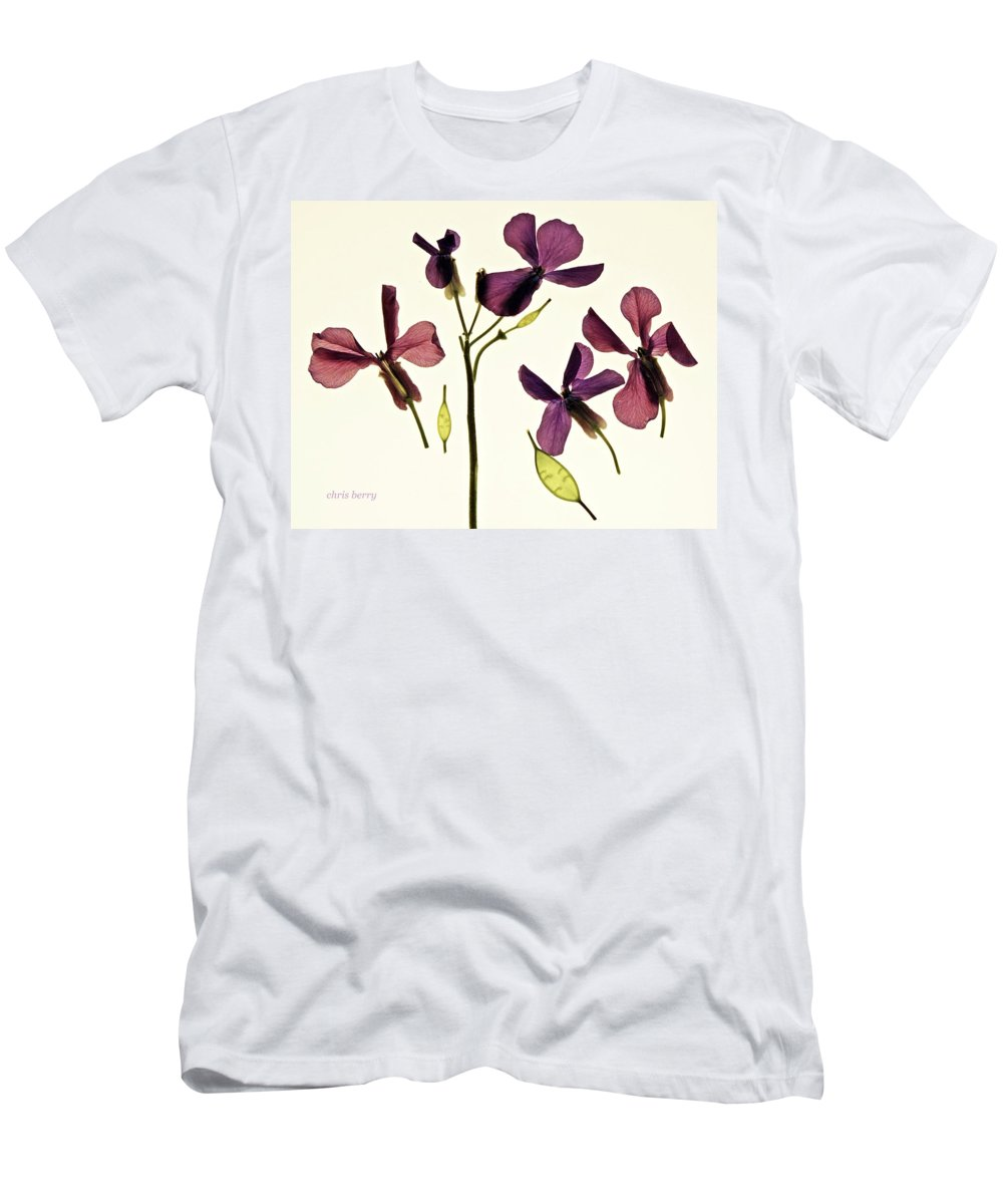 Flowers Men's T-Shirt (Athletic Fit) featuring the photograph Money Plant by Chris Berry