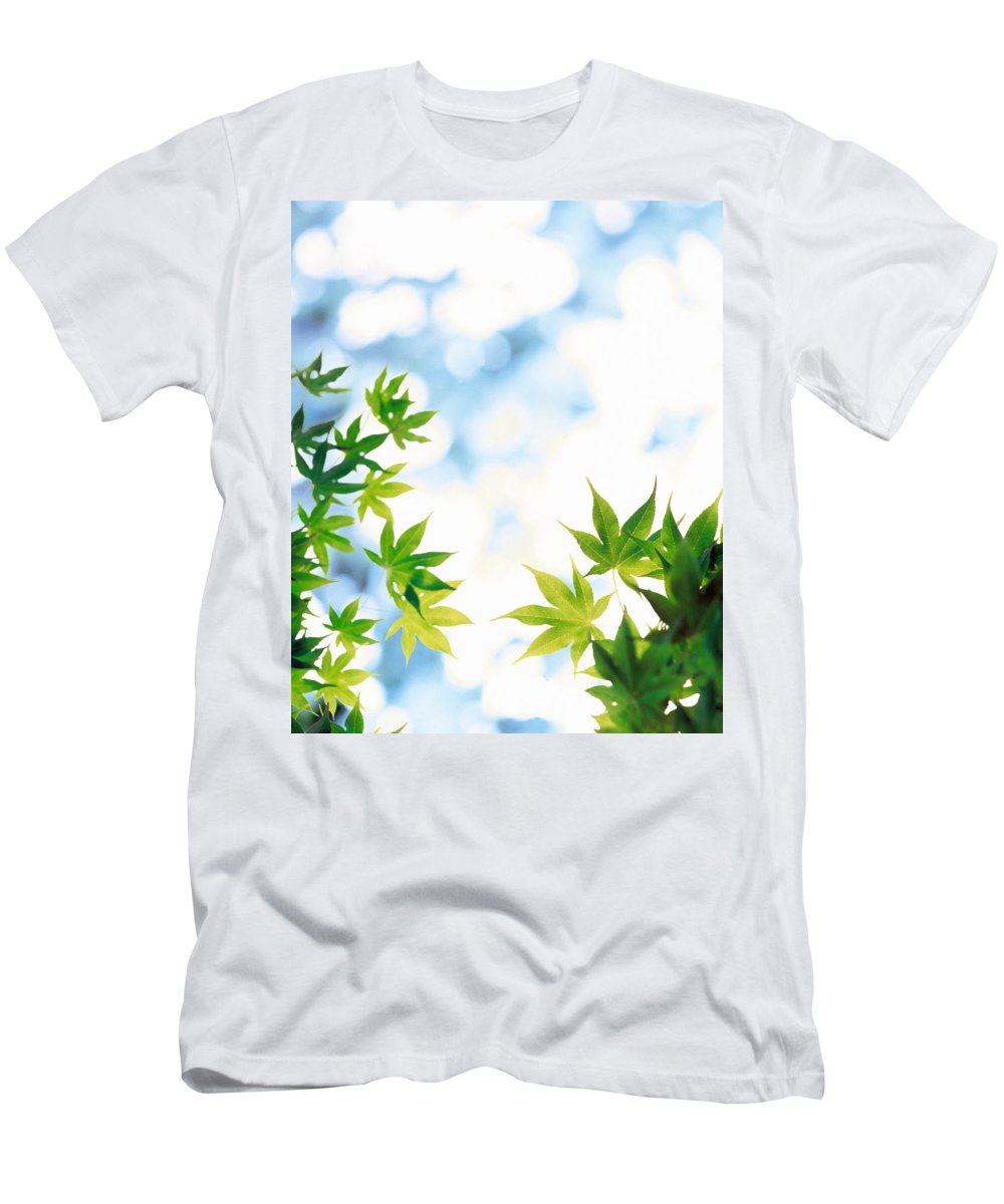 Photography Men's T-Shirt (Athletic Fit) featuring the photograph Green Leaves On Mottled Cloudy Sky by Panoramic Images