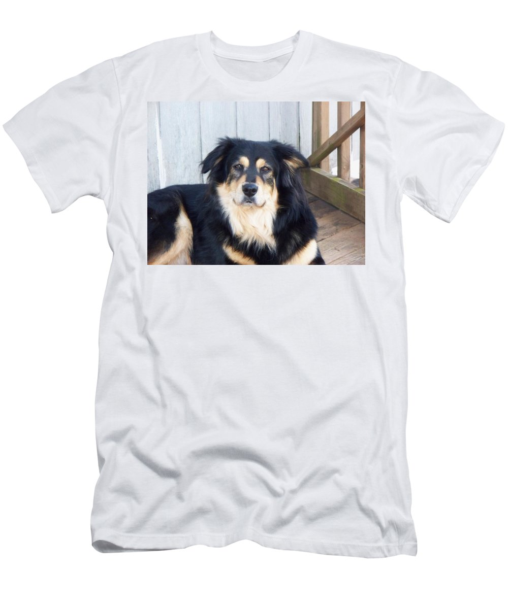 Dog Men's T-Shirt (Athletic Fit) featuring the photograph Handsome Boy by Lisa Wormell
