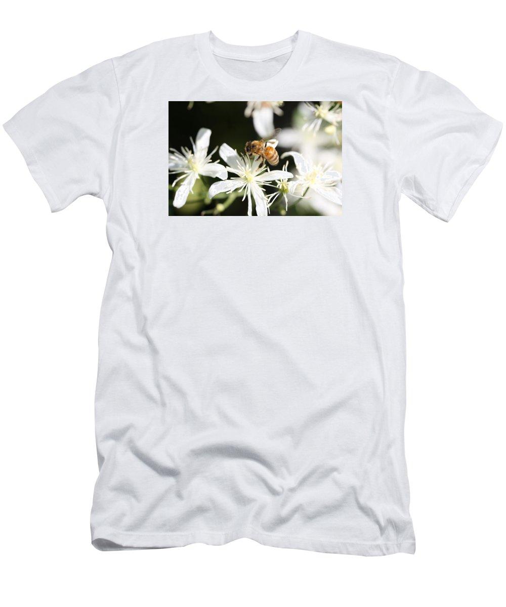 Honeybee Men's T-Shirt (Athletic Fit) featuring the photograph Honeybee On Clematis by Lucinda VanVleck