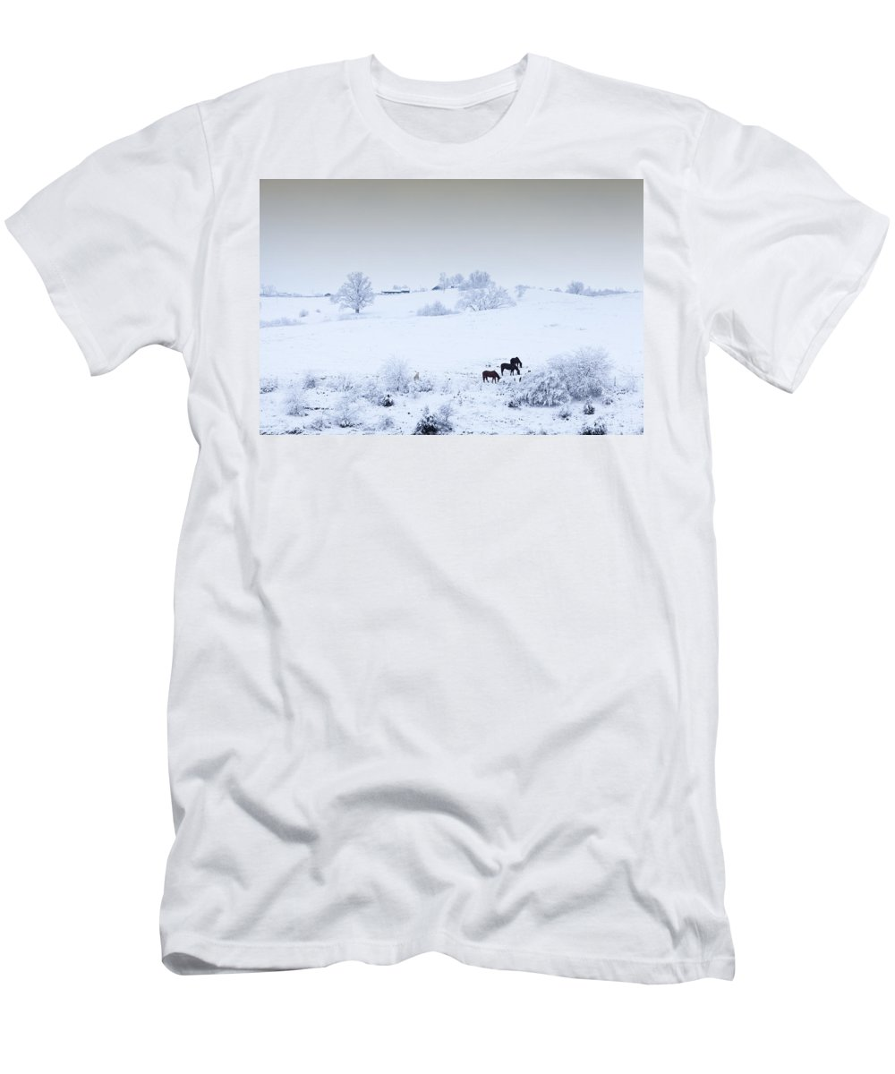 Field Men's T-Shirt (Athletic Fit) featuring the photograph Horses In The Snow by Alexey Stiop
