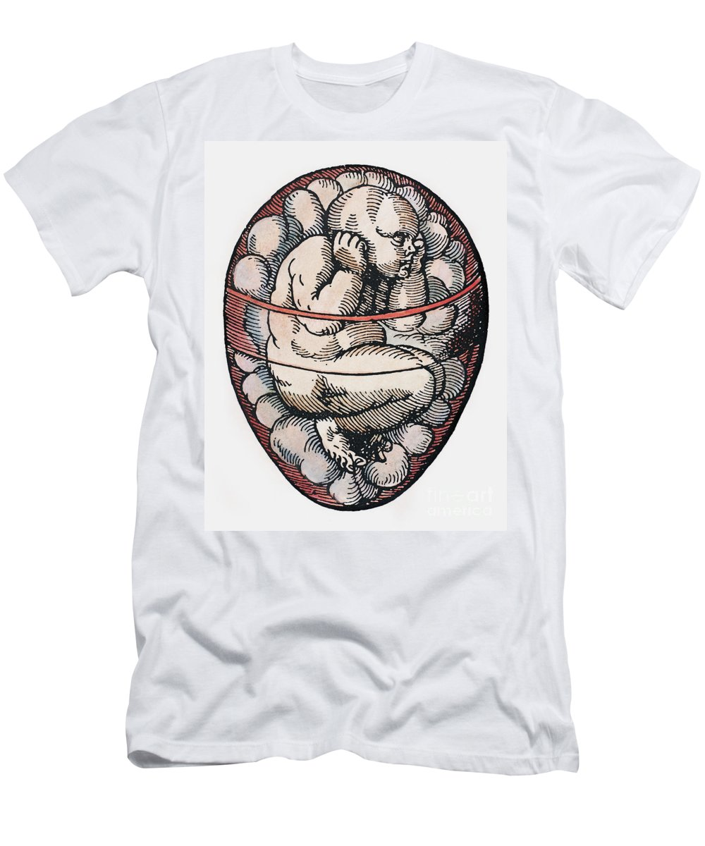 16th Century Men's T-Shirt (Athletic Fit) featuring the photograph Human Fetus, 16th Century by Granger