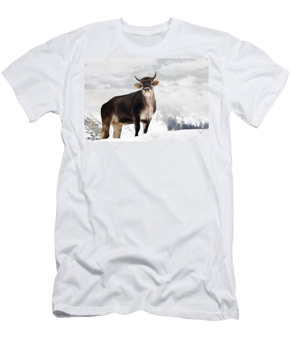 Animal Men's T-Shirt (Athletic Fit) featuring the photograph I Don't Like Snow by Annie Snel
