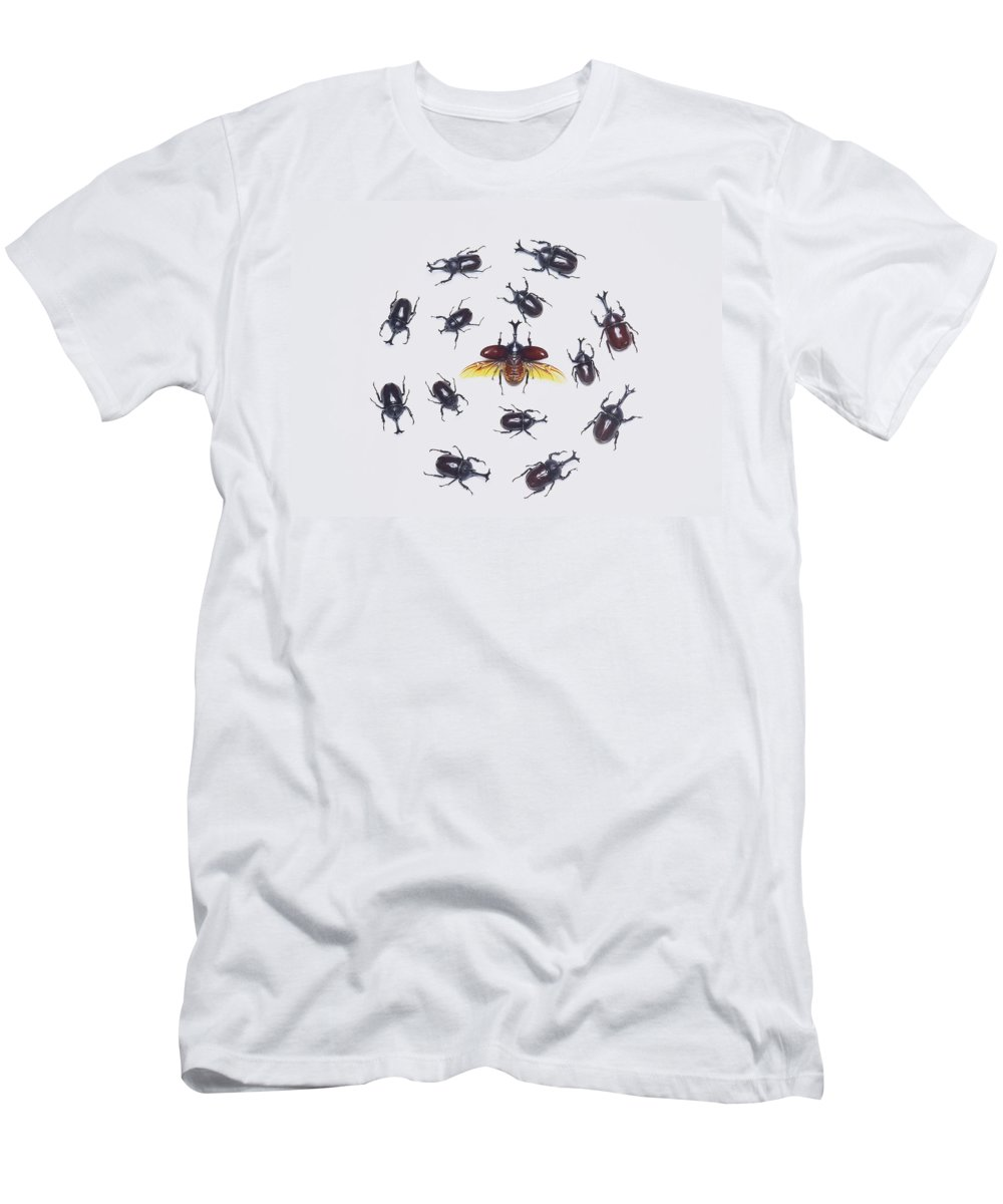 Feb0514 Men's T-Shirt (Athletic Fit) featuring the photograph Japanese Rhinoceros Beetle Males by Kazuo Unno