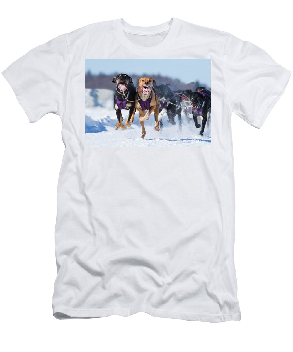 Champions Men's T-Shirt (Athletic Fit) featuring the photograph K9 Athletes by Mircea Costina Photography