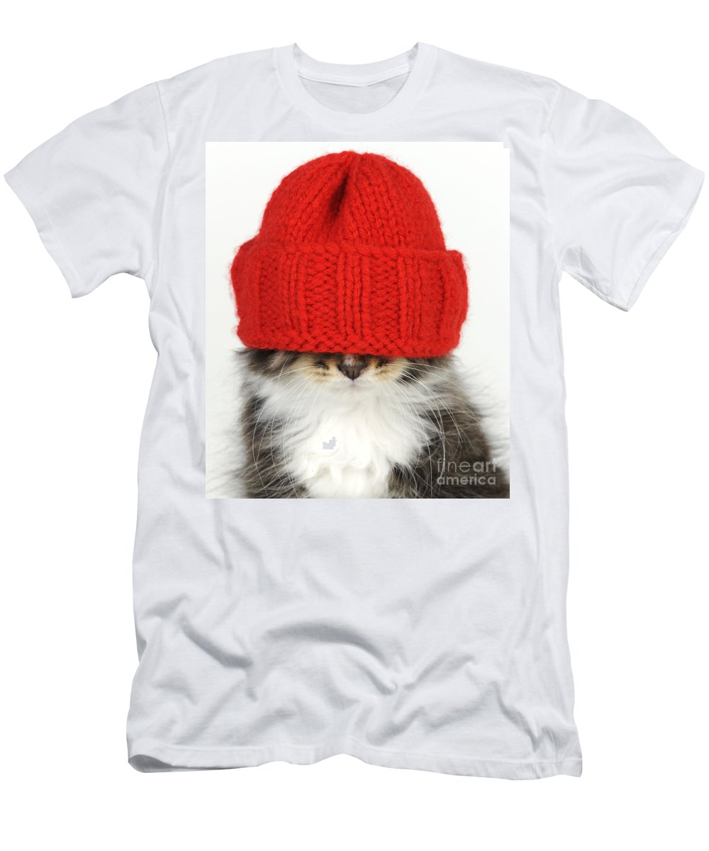 Cat Men's T-Shirt (Athletic Fit) featuring the photograph Kitten In A Hat by John Daniels