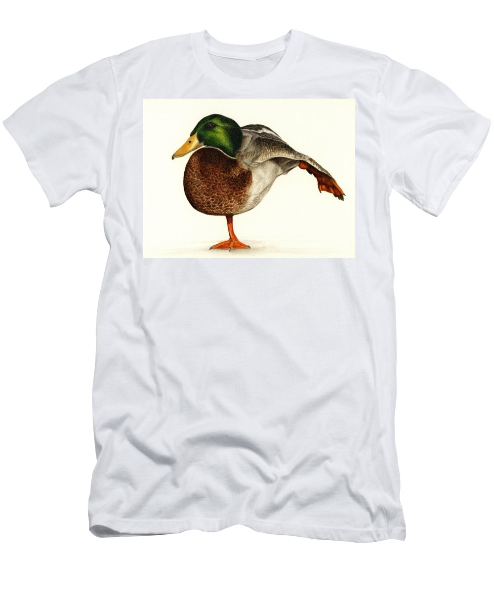 Duck Men's T-Shirt (Athletic Fit) featuring the painting Mallard Ballet by Pat Erickson