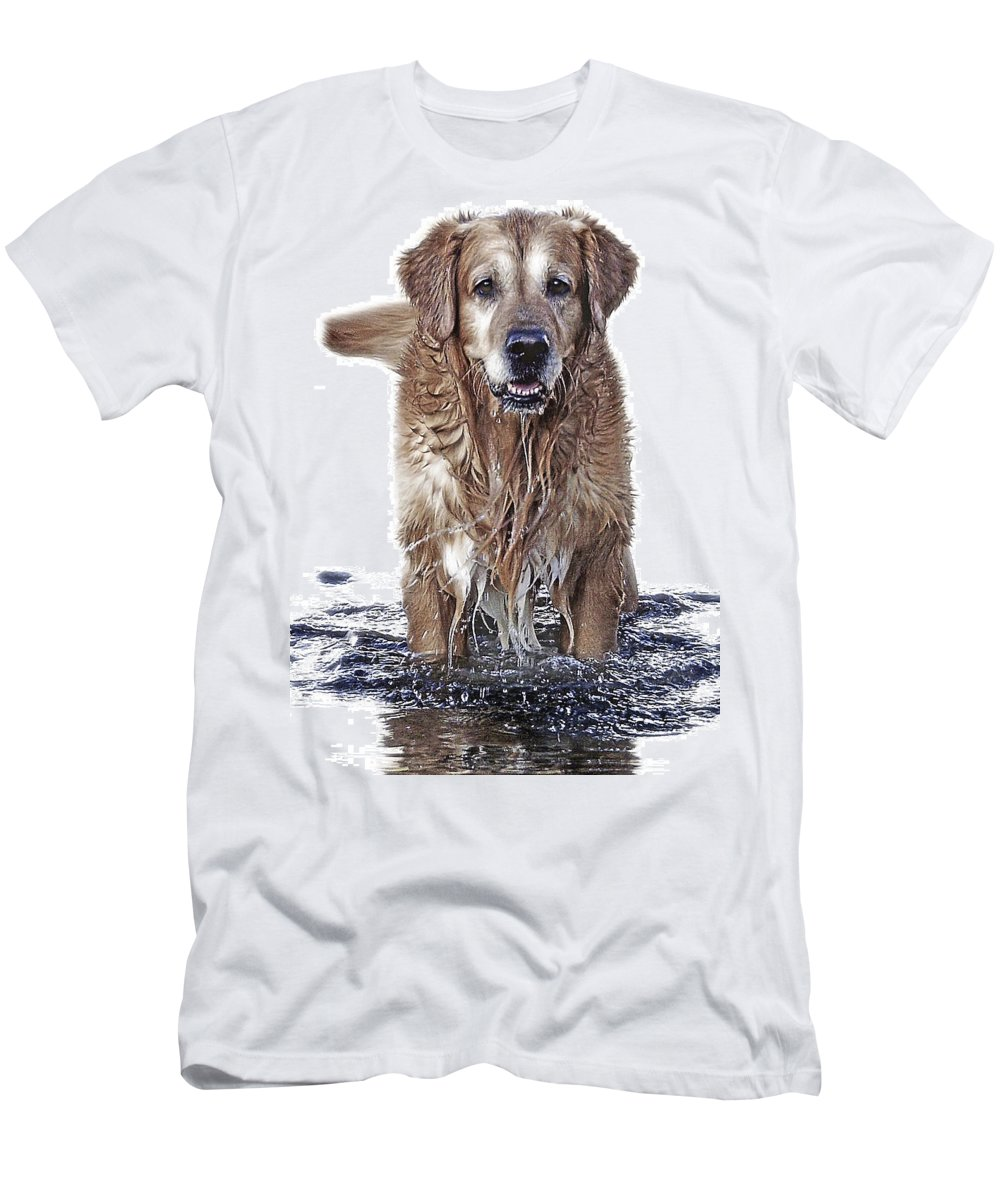 Dog Men's T-Shirt (Athletic Fit) featuring the photograph Master Of Wet Elements by Joachim G Pinkawa