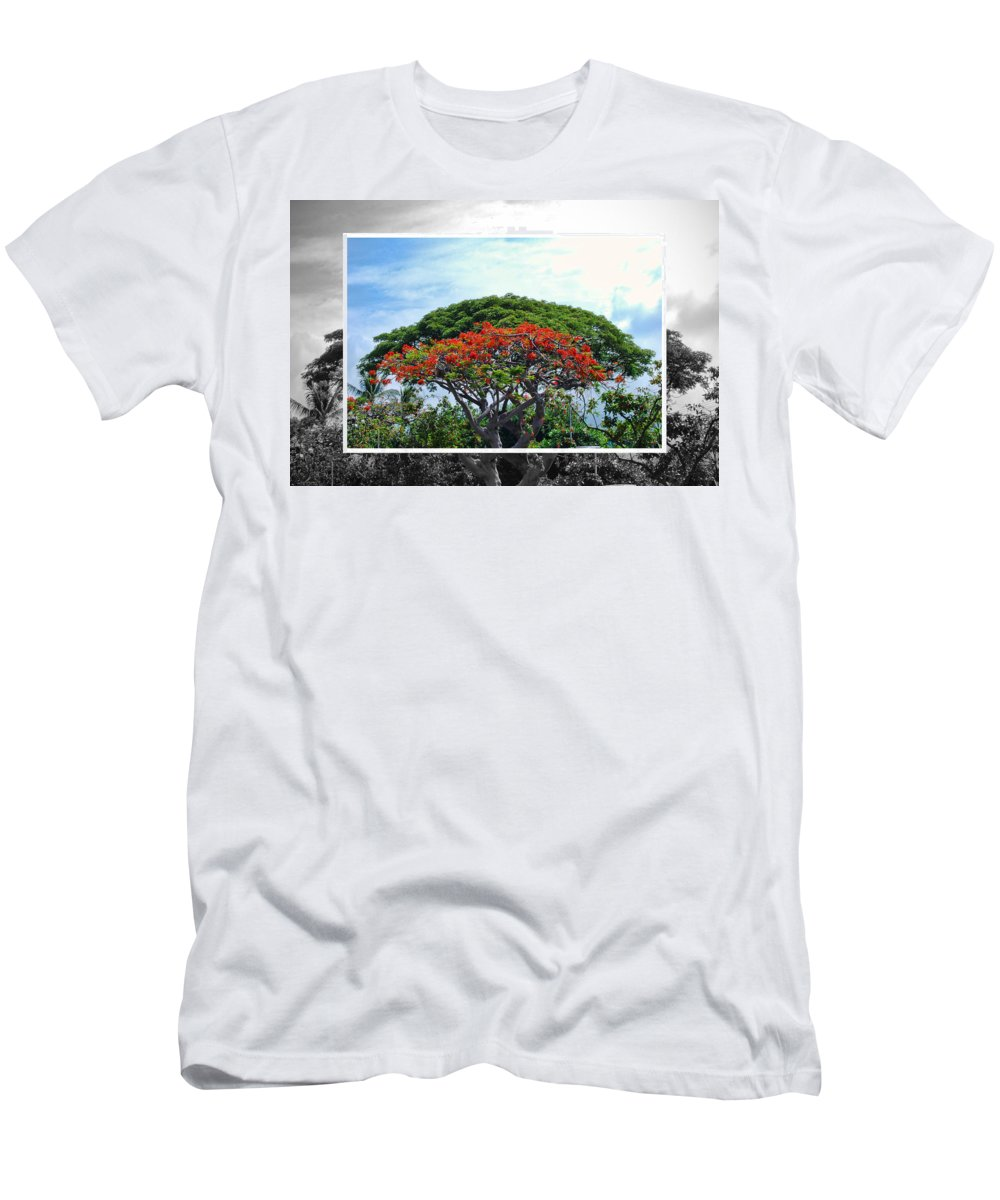 Nature Men's T-Shirt (Athletic Fit) featuring the photograph Monkey Pod Trees - Kona Hawaii by Paulette B Wright