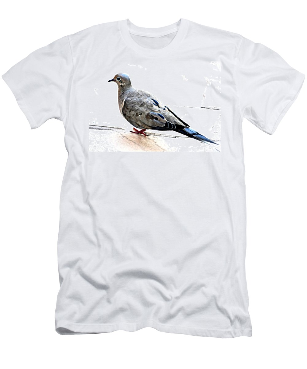 Animal Men's T-Shirt (Athletic Fit) featuring the photograph Mourning Dove by Jay Milo