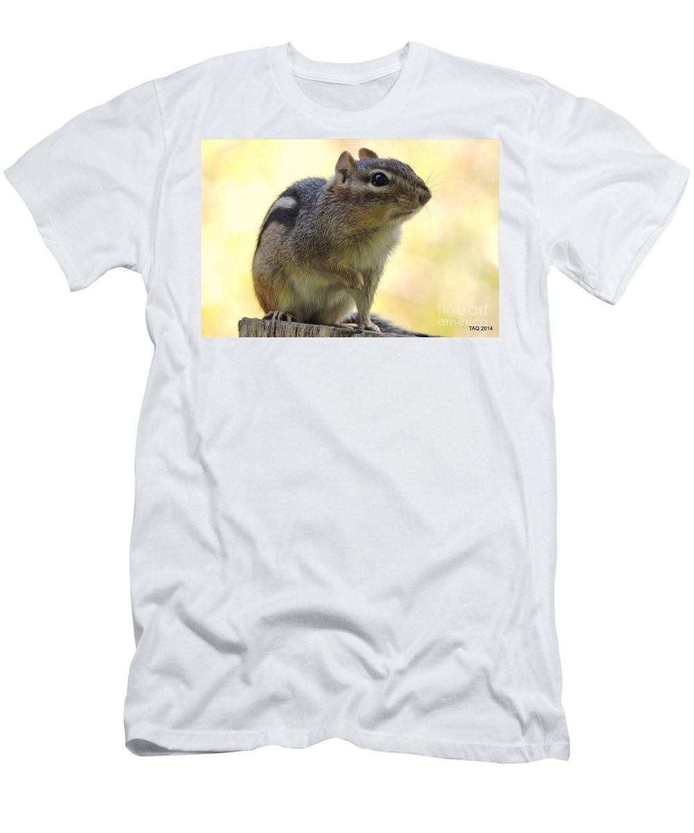 Chipmunk Men's T-Shirt (Athletic Fit) featuring the photograph Mr. Chips by Tami Quigley