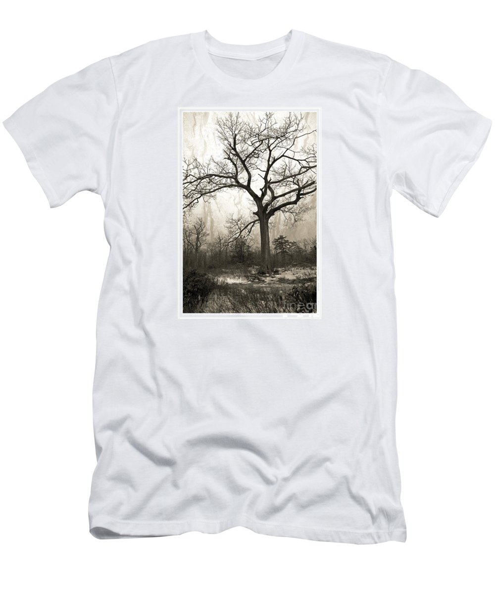 Twisted Men's T-Shirt (Athletic Fit) featuring the photograph Mystical Forest by John Stephens