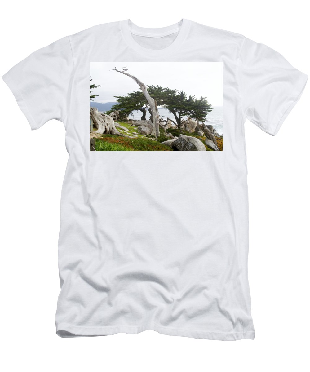Not The Ghost Tree Men's T-Shirt (Athletic Fit) featuring the digital art Not The Ghost Tree by Barbara Snyder