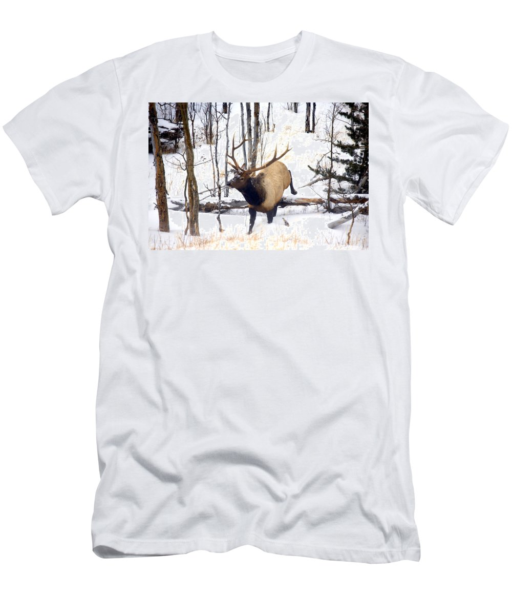 Elk T-Shirt featuring the photograph On the Move by Mike Dawson