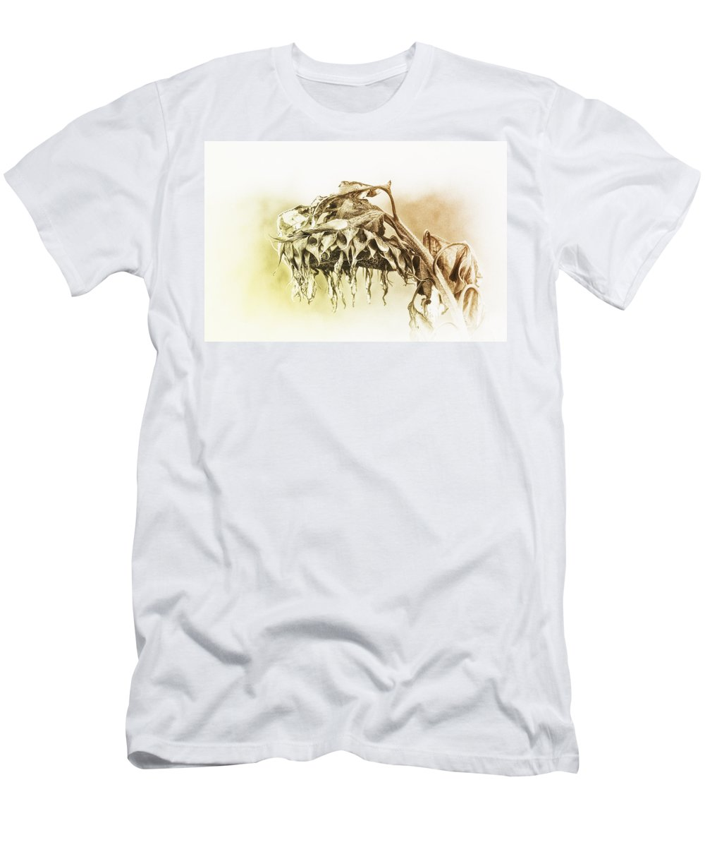 Sunflower Men's T-Shirt (Athletic Fit) featuring the photograph One Too Many Mornings by Susan Capuano