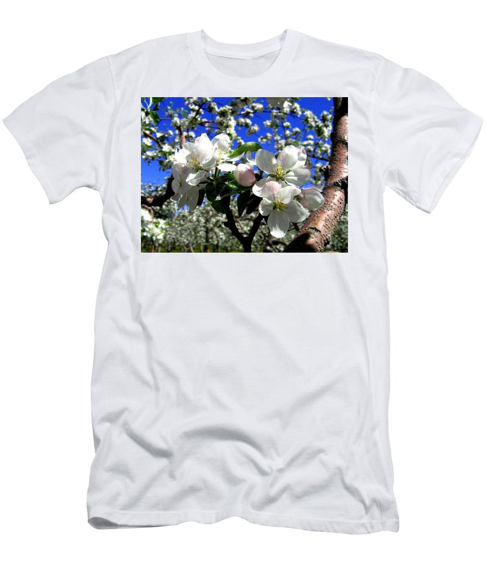 Apple Blossoms Men's T-Shirt (Athletic Fit) featuring the photograph Orchard Ovation by Will Borden