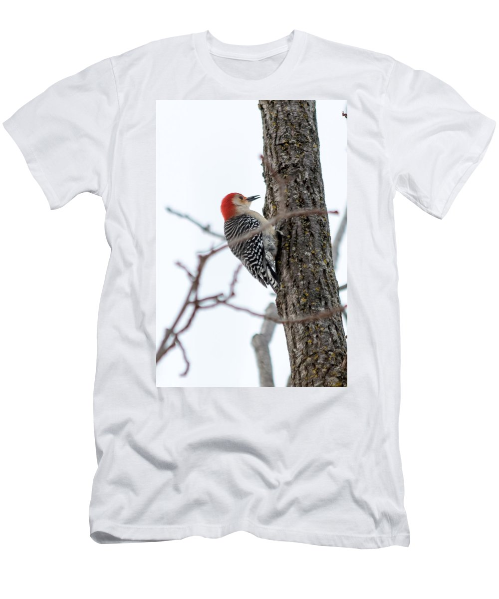 Bird Men's T-Shirt (Athletic Fit) featuring the photograph Red-bellied Woodpecker by Gaurav Singh