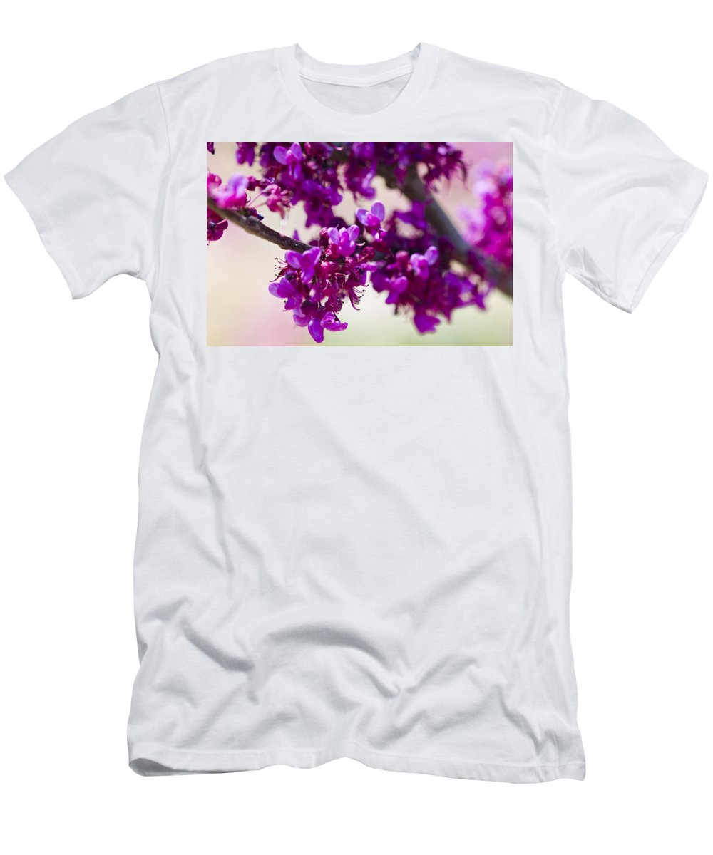 Rose Photographs Men's T-Shirt (Athletic Fit) featuring the photograph Red Bud Oklahoma by Vernis Maxwell