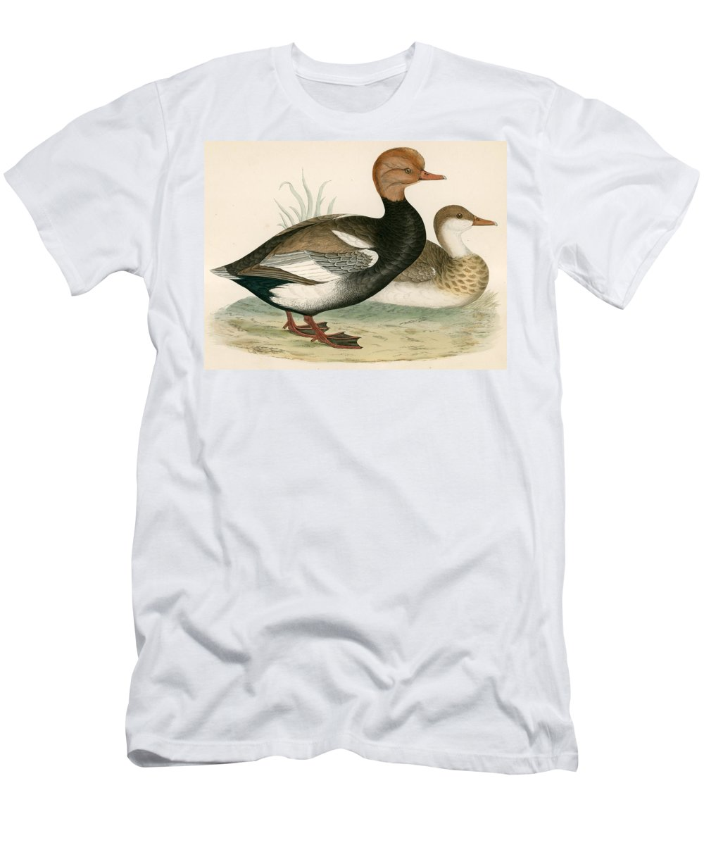 Birds Men's T-Shirt (Athletic Fit) featuring the photograph Red Crested Whistling Duck by Beverley R. Morris