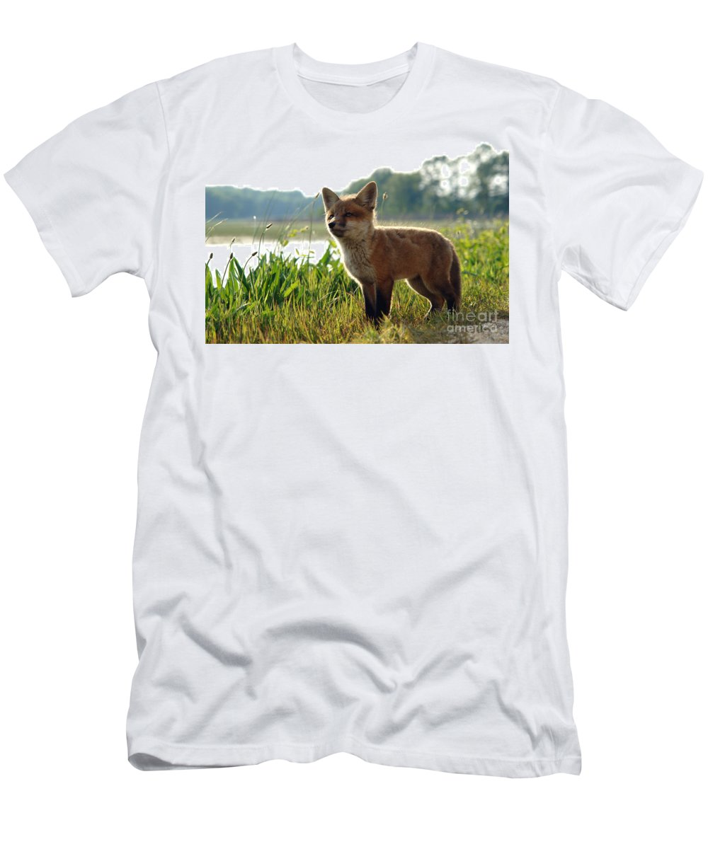 Fox Men's T-Shirt (Athletic Fit) featuring the photograph Red Fox Kit by Olivier Le Queinec