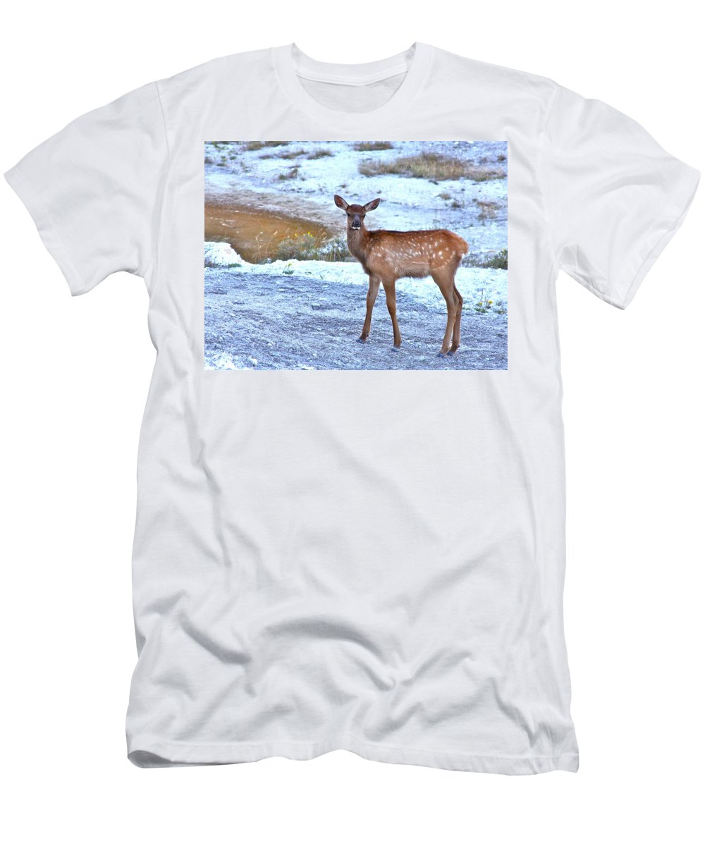 Spots Men's T-Shirt (Athletic Fit) featuring the photograph Rocky Mountain Elk Calf by Karon Melillo DeVega