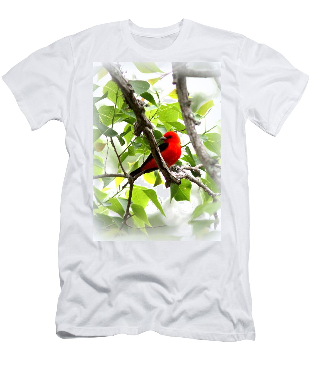 Scarlet Tanager Men's T-Shirt (Athletic Fit) featuring the photograph Scarlet Tanager - 19 by Travis Truelove