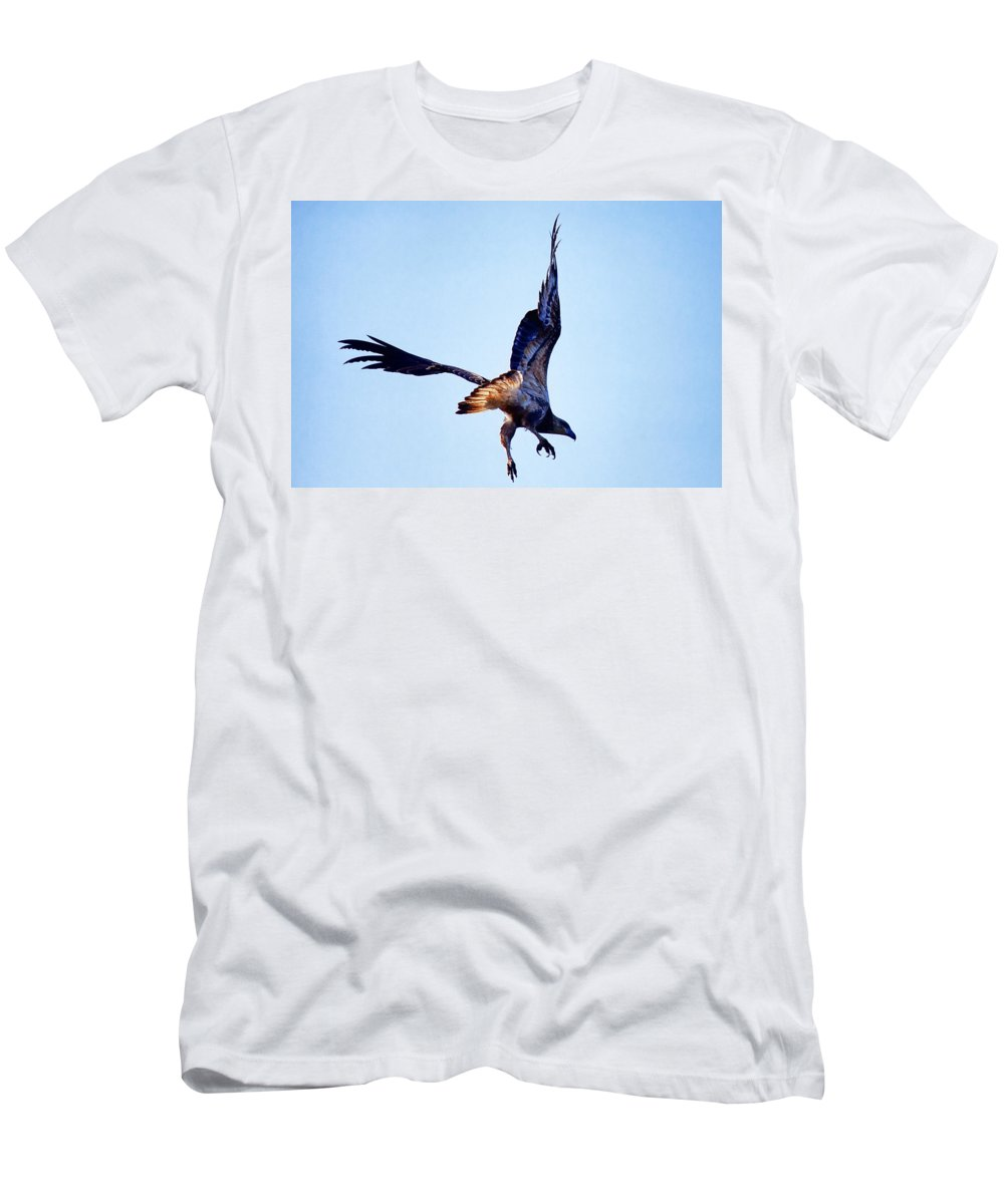Eagle Men's T-Shirt (Athletic Fit) featuring the photograph Sea Eagle Flight by Douglas Barnard