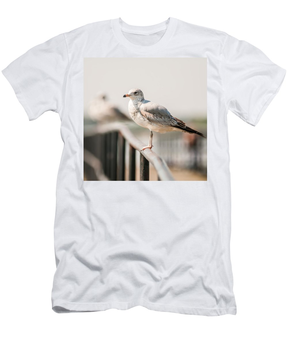 Atlantic Men's T-Shirt (Athletic Fit) featuring the photograph Seagull Standing On Rail by Alex Grichenko