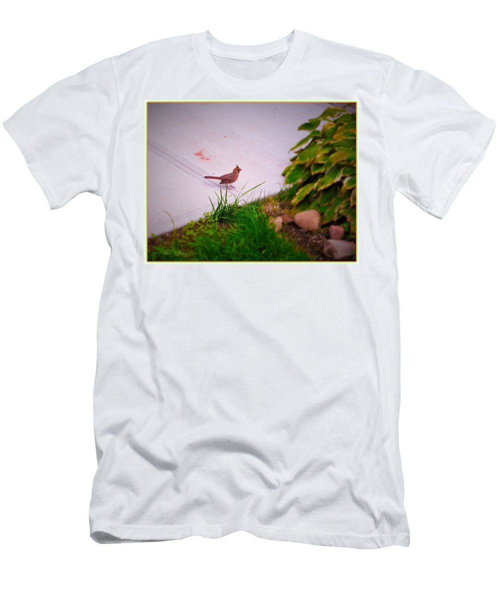 Searching For Mommy Men's T-Shirt (Athletic Fit) featuring the photograph Searching For Mommy by Sonali Gangane
