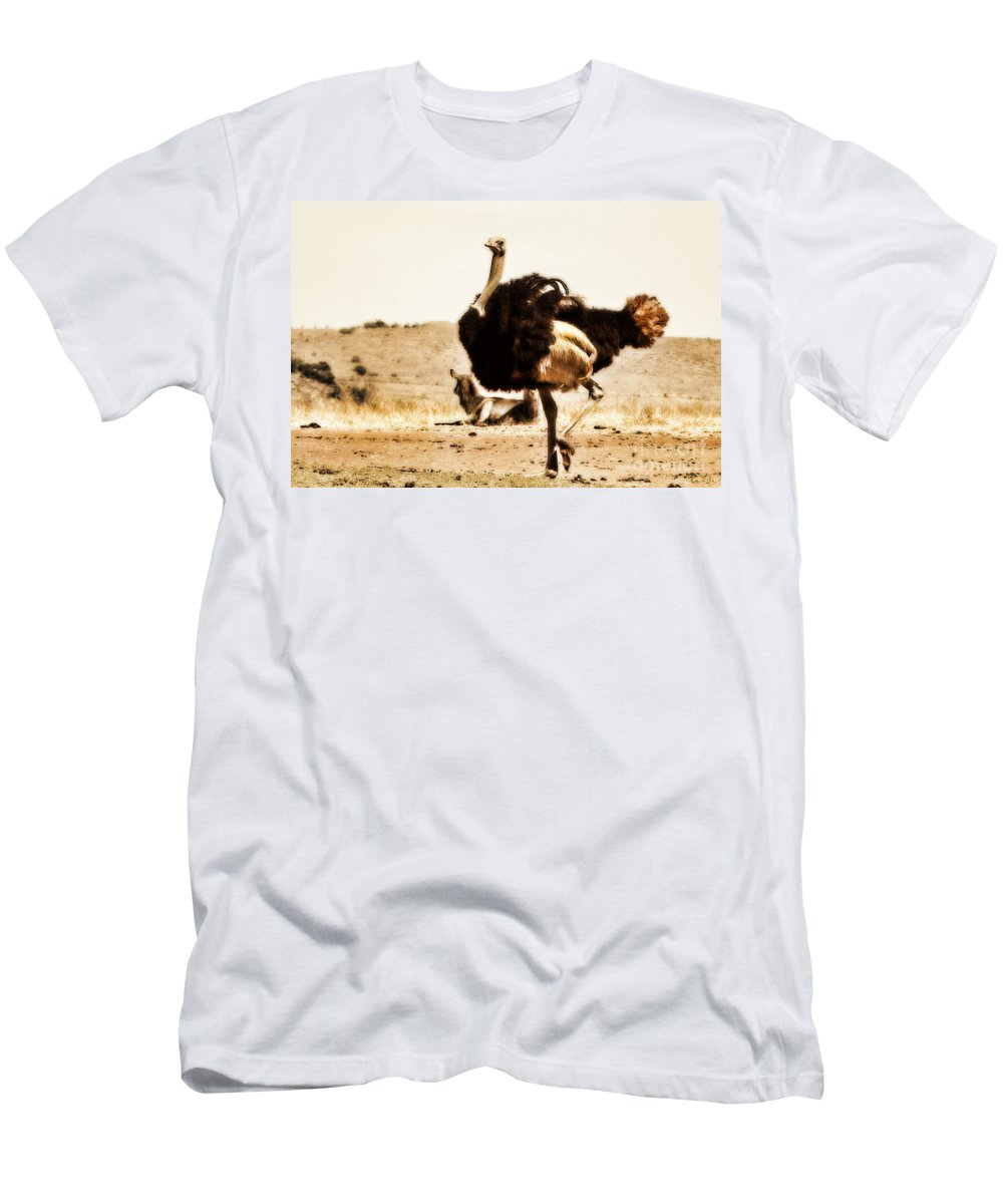 Ostrich Men's T-Shirt (Athletic Fit) featuring the photograph Show-off V4 by Douglas Barnard