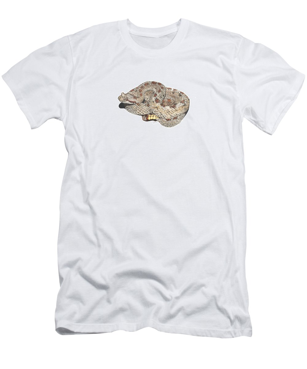 Mojave Men's T-Shirt (Athletic Fit) featuring the painting Sidewinder by Cindy Hitchcock